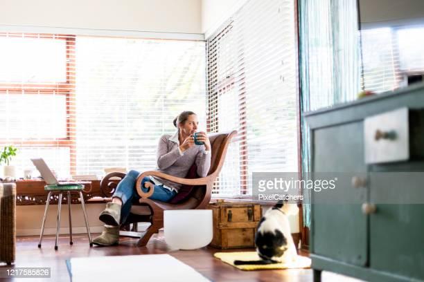 ビジネスウーマンは、彼女の猫と一緒に窓の外を見てお茶の休憩を取ります - ワイドショット ストックフォトと画像