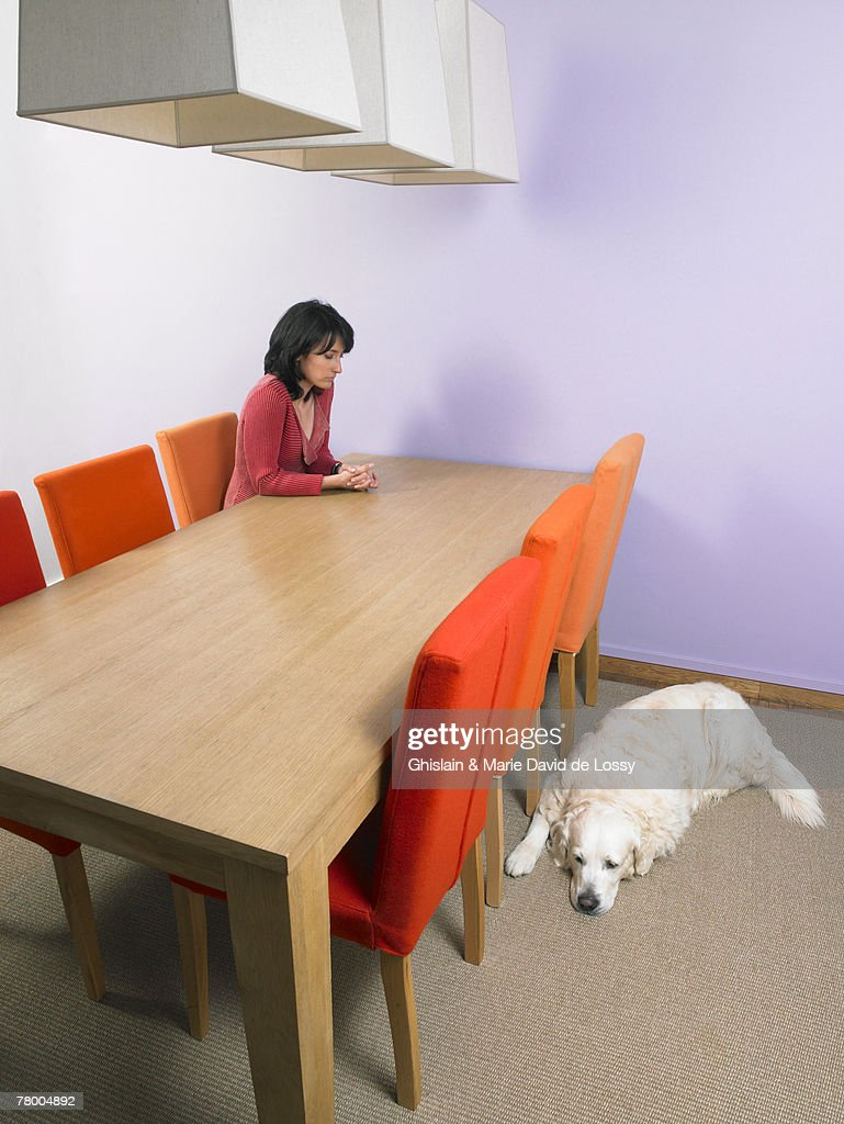 Businesswoman waiting at meeting table with dog  sleeping on floor. : ストックフォト