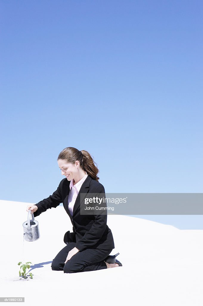 Businesswoman Watering a Plant in a Desert : Stock Photo