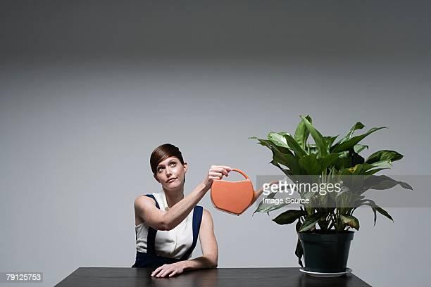 Une femme d'affaires arroser une plante