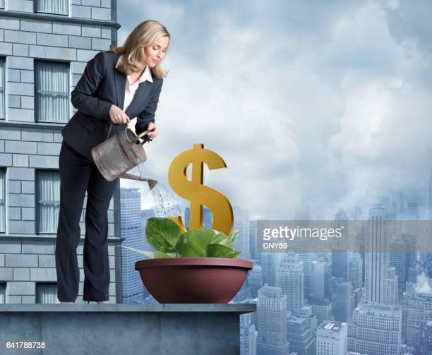 Femme d'affaires, arroser une plante qui pousse un symbole Dollar
