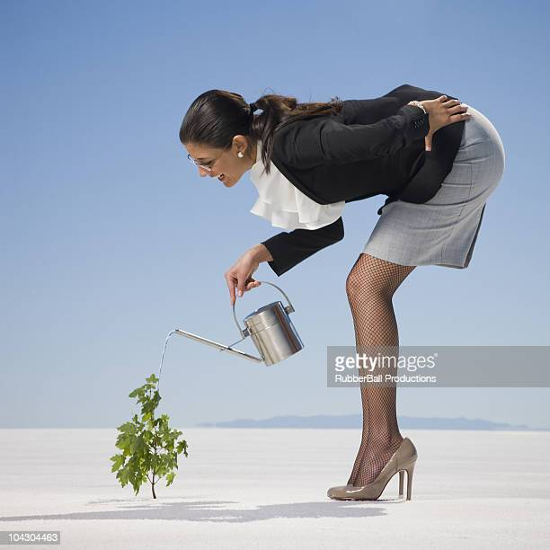 businesswoman watering a sapling in the desert - bending over in skirt stock pictures, royalty-free photos & images