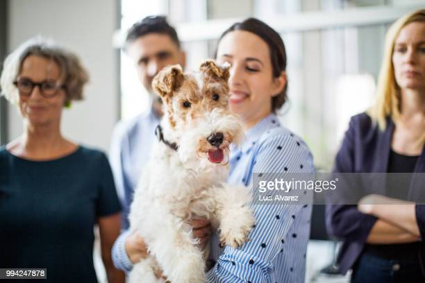 businesswoman with dog standing against colleagues - terrier stock pictures, royalty-free photos & images