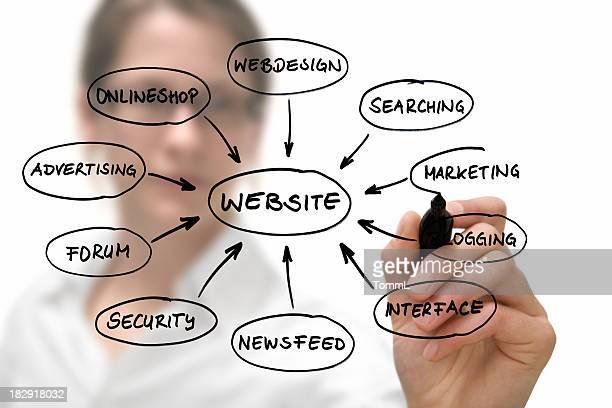 Businesswoman with website diagram