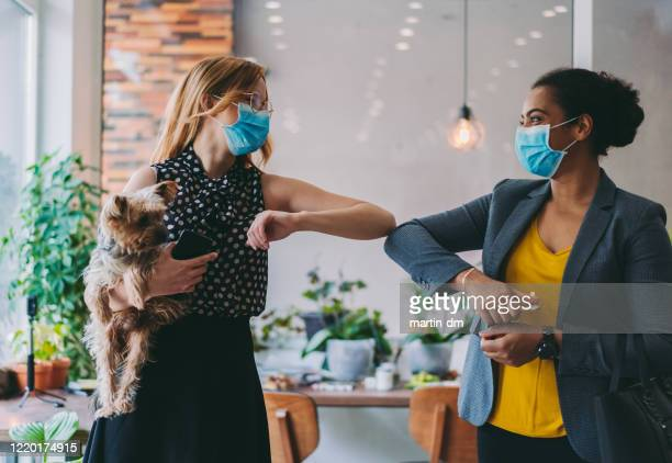 businesswomen bump elbows instead of handshake during covid-19 pandemic - elbow bump stock pictures, royalty-free photos & images