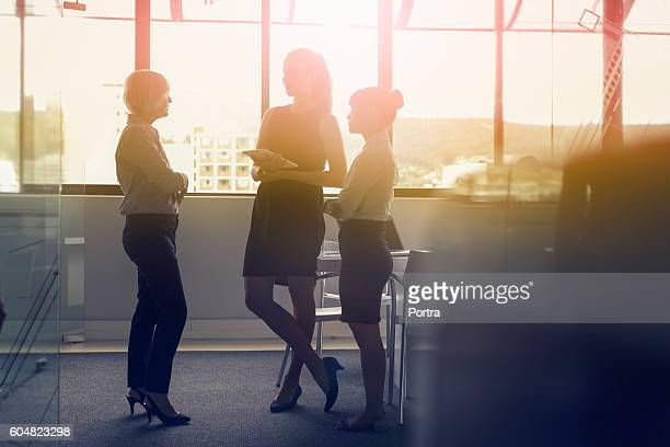 Businesswomen discussing in meeting against window