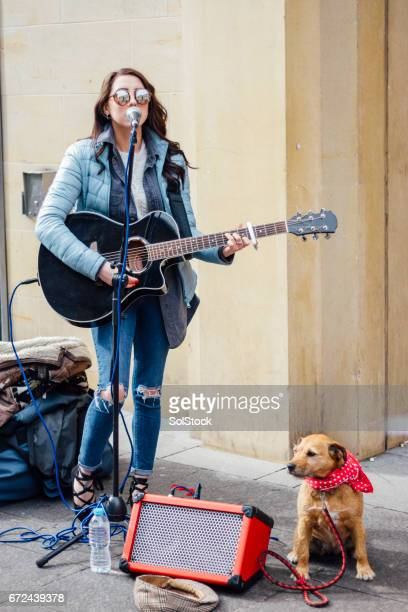 busker and her dog - singer stock pictures, royalty-free photos & images