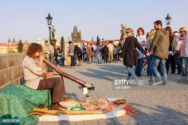 Busker playing didgeridoo at Charles Bridge. Prague