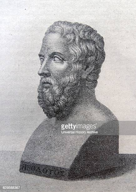 Bust of Herodotus a Greek historian who was born in Halicarnassus