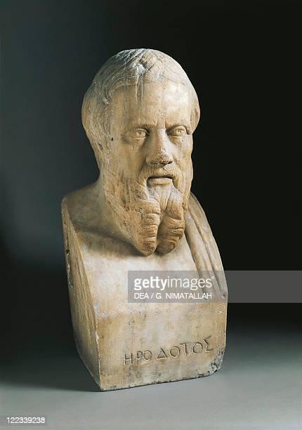 Bust of Herodotus of Halicarnassus , greek historian, marble.