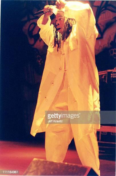 Busta Rhymes during Smokin Grooves Tour at Universal Ampitheater