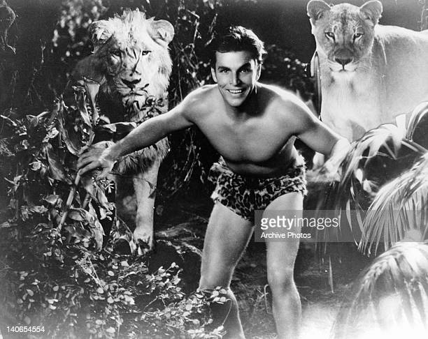 Buster Crabbe standing before lions in a scene from the film 'King Of The Jungle' 1933