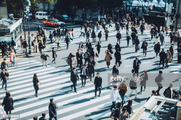 busy commuters crossing street during office rush hours in shibuya crossroad, tokyo - 歩行者 ストックフォトと画像