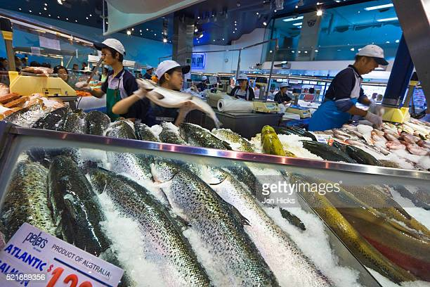 Busy counter in the Sydney Fish Market