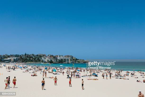 a busy day at bondi beach with a view of the sand, sea and north bondi in the background - christine wehrmeier stock photos and pictures