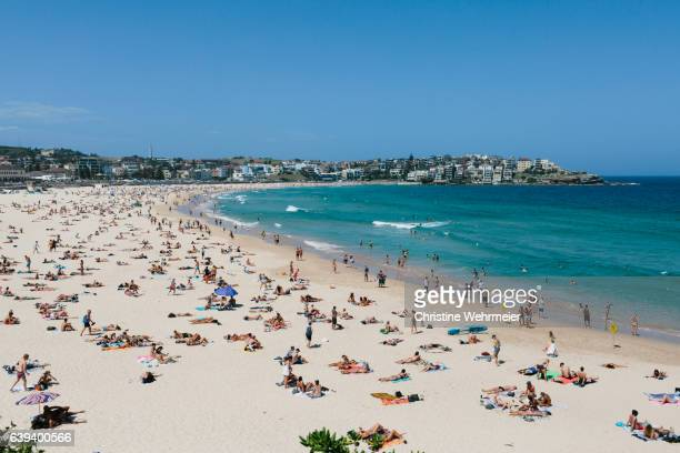 A busy landscape image of Bondi beach, filled with sunbathers on a sunny day