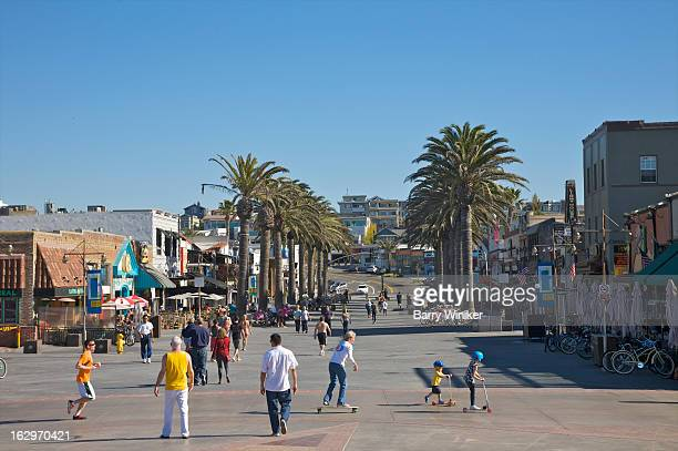 busy plaza with rows of palm trees. - hermosa beach stock pictures, royalty-free photos & images