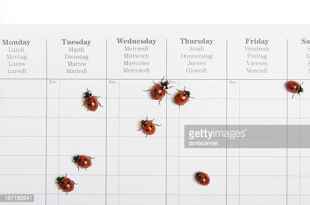 busy schedule - tuesday stock pictures, royalty-free photos & images