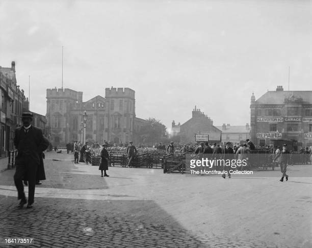Busy sheep stock auction with Boston Town Hall in the backgroundBoston Lincolnshire UK circa 1912
