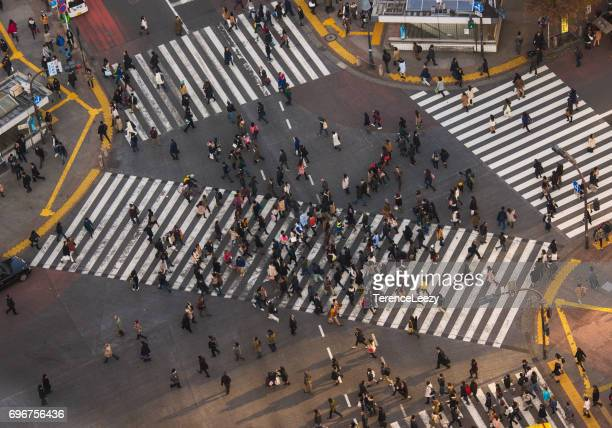 busy shibuya crossing at sunset, japan - overhead view of traffic on city street tokyo japan stock photos and pictures