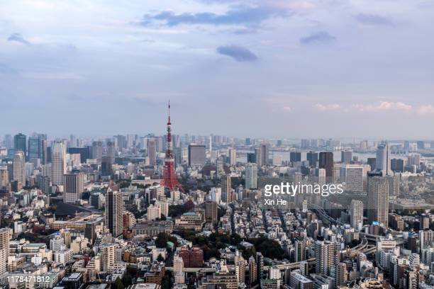 busy streets in tokyo and the view of tokyo skytree / tokyo, japan - ワイドショット ストックフォトと画像
