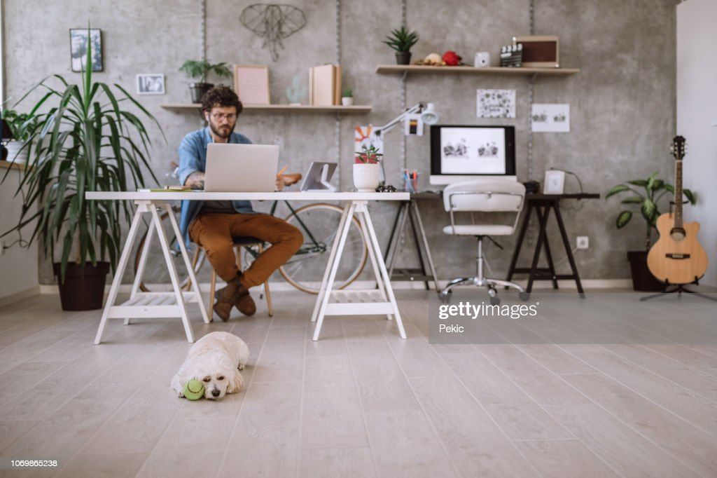 Busy Young Freelancer at home office : Stock Photo