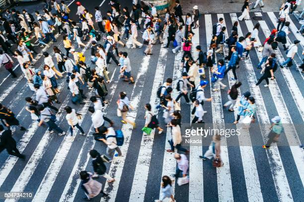 busy zebra crossing in japan - zebra crossing stock pictures, royalty-free photos & images