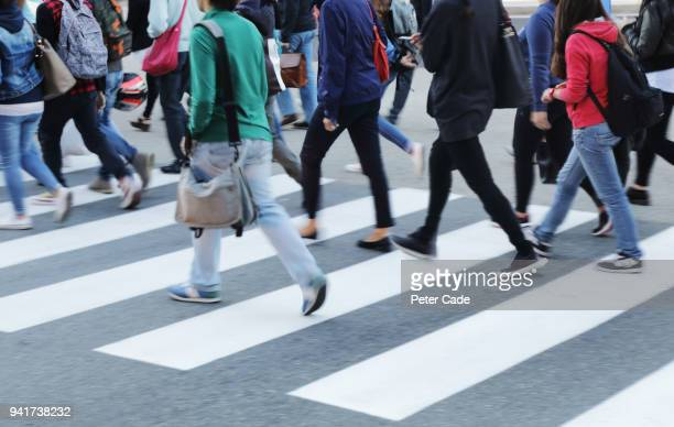 busy zebra crossing - low section stock pictures, royalty-free photos & images