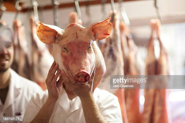 butcher holding pig's head in front of face - ugly pig stock pictures, royalty-free photos & images