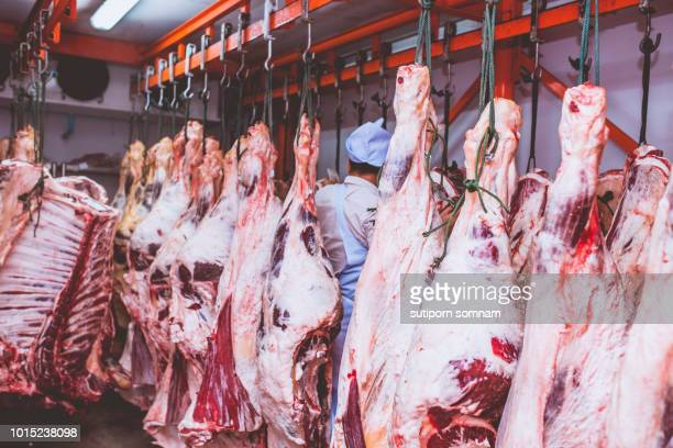 butchers work in meat curing. - 食肉処理場 ストックフォトと画像