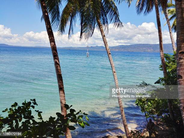 buton island in sulawesi - sulawesi stock pictures, royalty-free photos & images