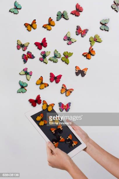 Butterflies coming out from a tablet