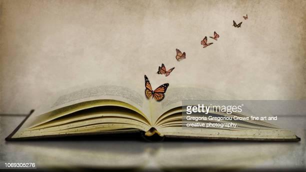butterflies flying out of open book - gregoria gregoriou crowe fine art and creative photography. - fotografias e filmes do acervo