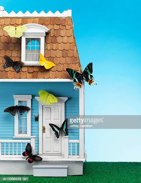 Butterflies on model house, close-up