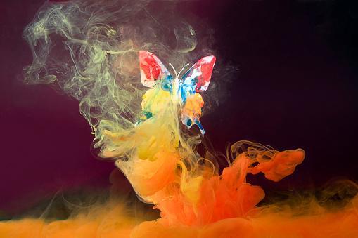 Butterfly in color - gettyimageskorea