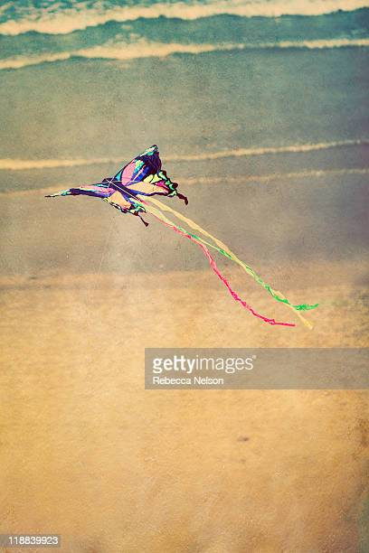 butterfly kite floating above sandy beach an ocean - rebecca nelson stock pictures, royalty-free photos & images