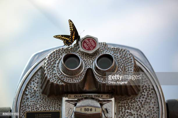 A butterfly lands on a tower viewer during the solar eclipse at 'Top of the Rock' observatory at Rockefeller Center August 21 2017 in New York City...