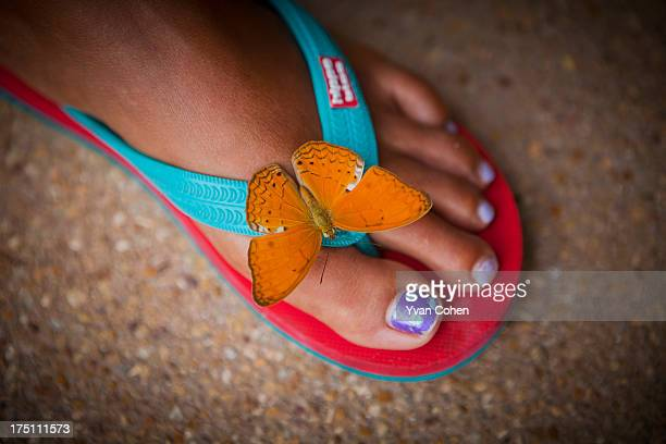 Butterfly lands on a woman's foot..