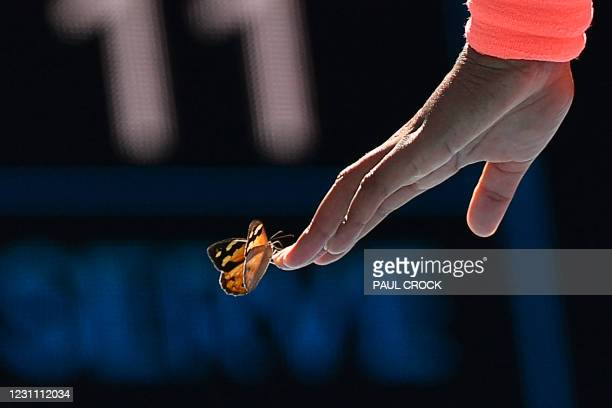 Butterfly lands on Japan's Naomi Osaka as she plays against Tunisia's Ons Jabeur during their women's singles match on day five of the Australian...