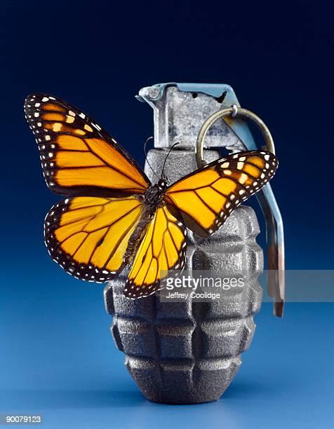 Butterfly on Grenade