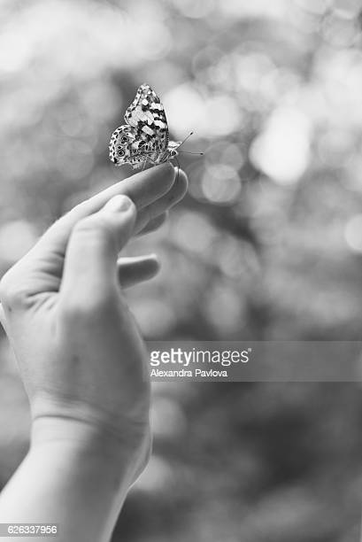 butterfly on woman's hand - alexandra pavlova stock pictures, royalty-free photos & images