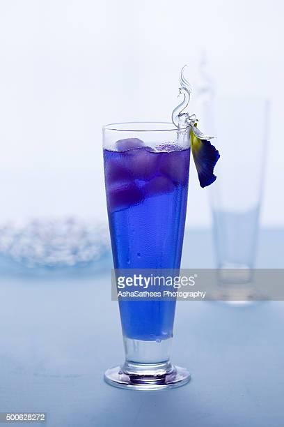 butterfly pea drink - clitoria bildbanksfoton och bilder
