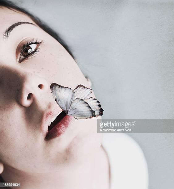 butterfly - alcazar de san juan - fotografias e filmes do acervo