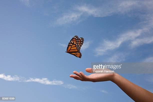 Butterfly release, one hand