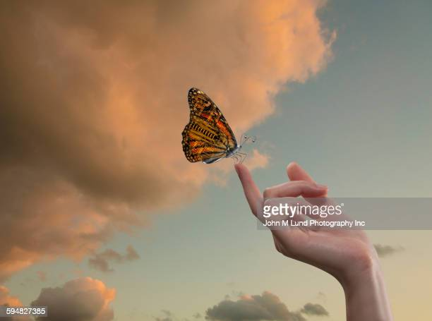 Butterfly with circuit board wings perching on finger in sky