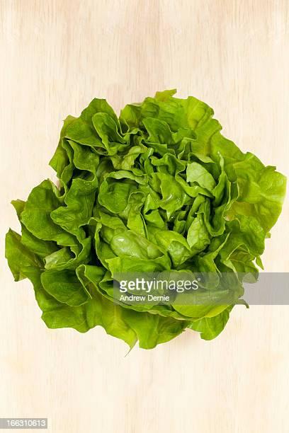 butterhead lettuce - andrew dernie ストックフォトと画像
