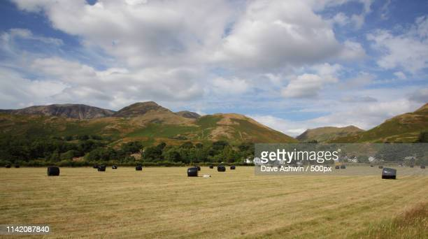 buttermere, cumbria - dave ashwin stock pictures, royalty-free photos & images
