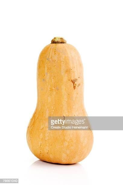 'Butternut pumpkin, close-up'