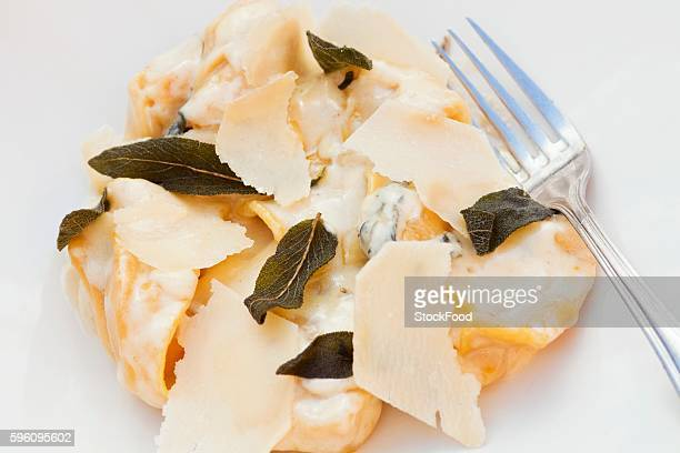 Butternut Squash Tortellacci with a Cream Sage Sauce and Parmesan Cheese