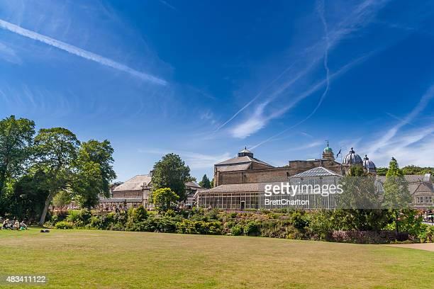 buxton giardini & opera house - arboreto foto e immagini stock